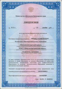 Лицензия образовательная деятельность-1